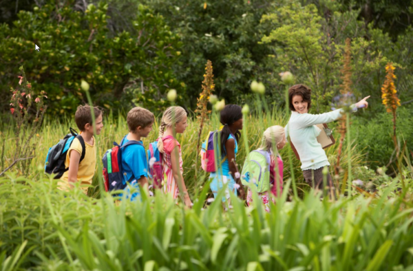 Get out and explore! Field trips are not just for school.